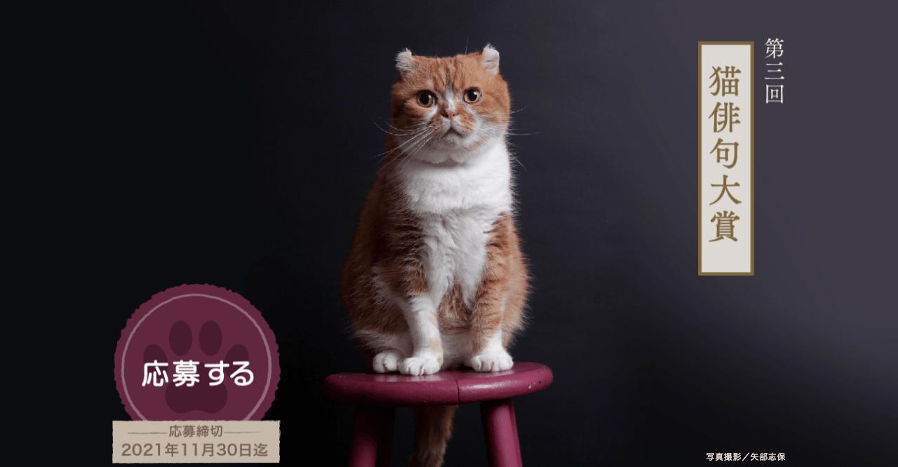 第3回猫俳句大賞【2021年11月30日締切】
